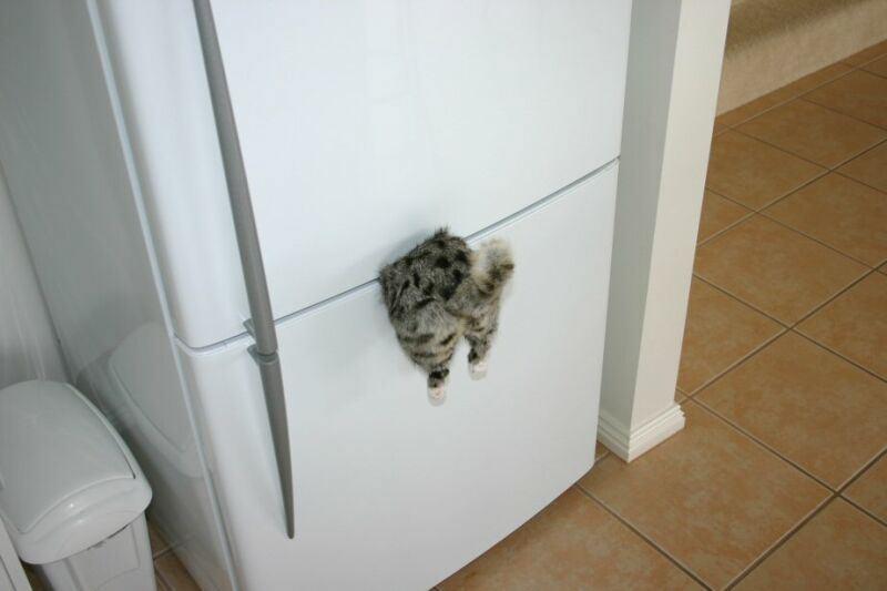 magnes na lodówkę